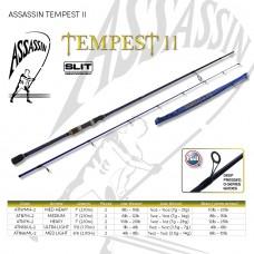 ASSASSIN TEMPEST II